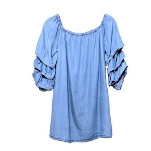 Zara Chambray Ruffle Poet Sleeve Dress Small
